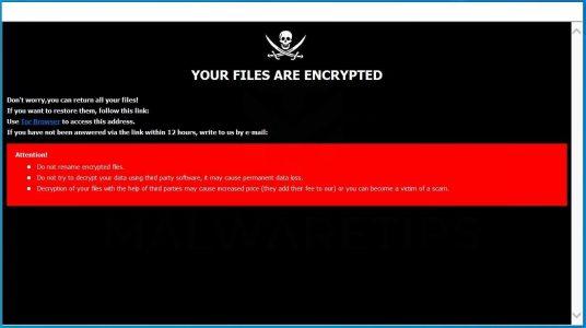 Ransomware aanval voorkomen